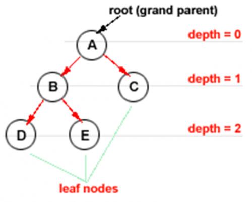 Konsep Pohon/Tree dan Jenis-Jenis Tree